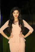 Richa panai new glamorous photos-thumbnail-14