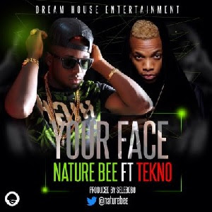 Download Your Face By Nature Bee Ft Tekno