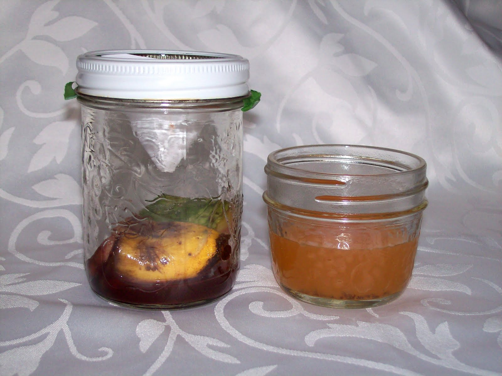 how to kill fruit flies fast vinegar