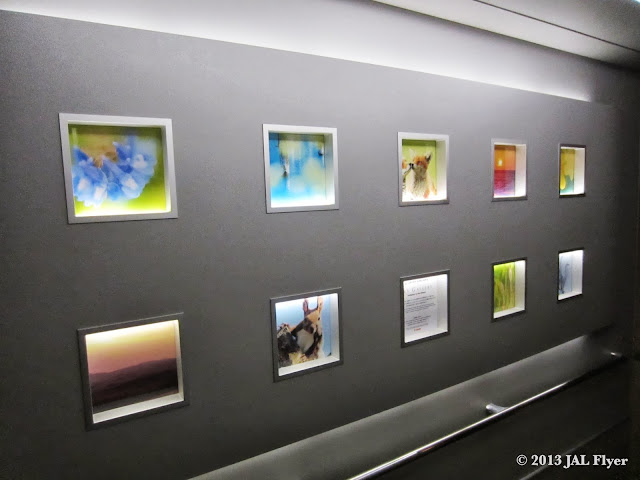 JAL Trip Report on JL005 - JAL Sky Gallery