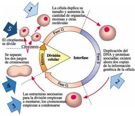 Acido definicion quimica yahoo dating 6