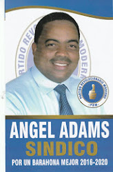 angel adams