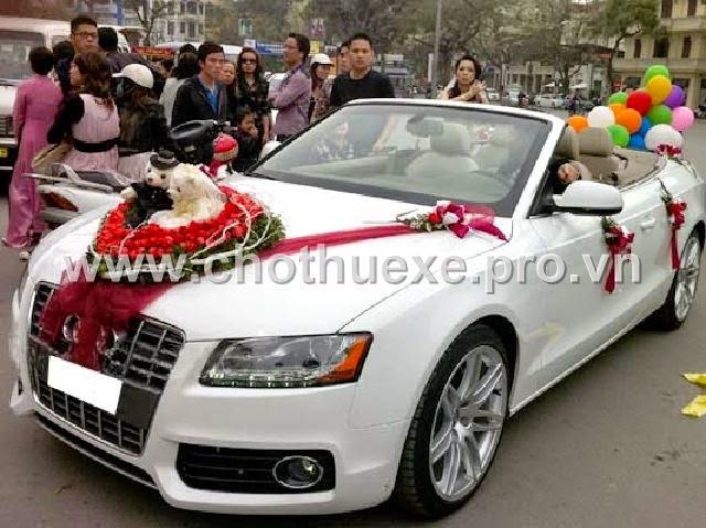 Cho thuê xe cưới mui trần màu trắng Audi A5 - xe cưới màu trắng