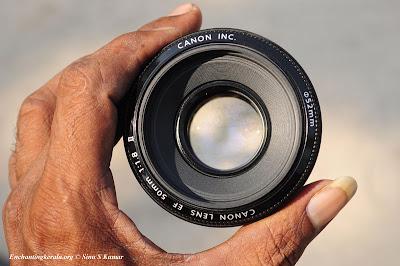 Canon 50mm f .8 II
