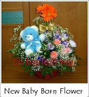 new baby born