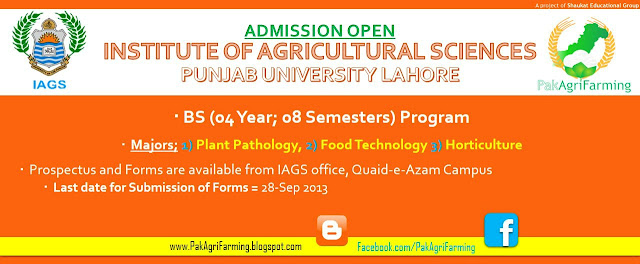 BS Admissions Notice in IAGS, Punjab University, Lahore