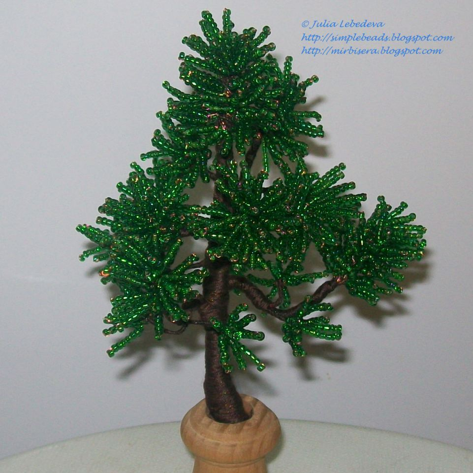 Christmas Tree Last Longer
