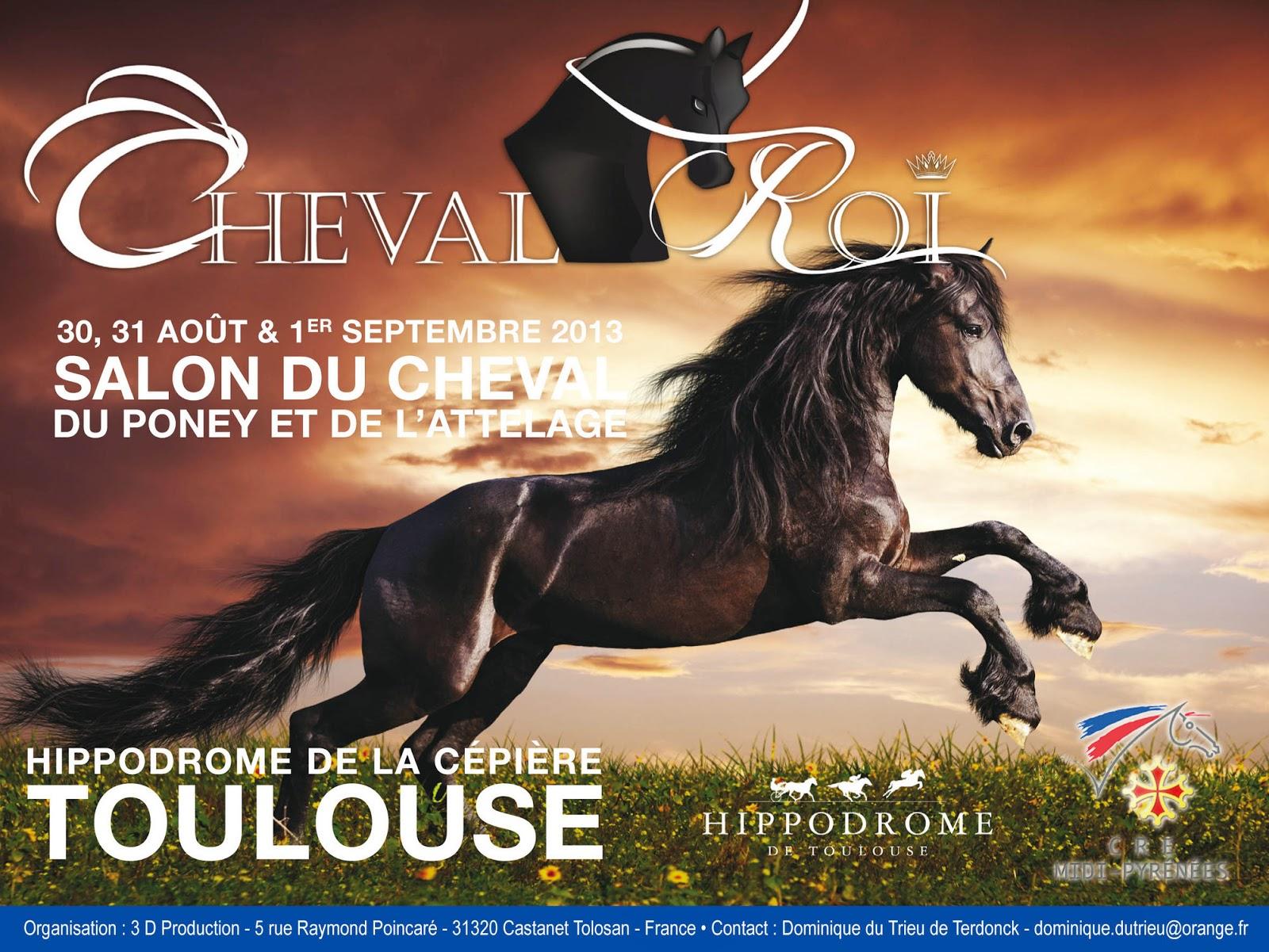 Cheval roi toulouse 2013 cheval compet - Salon cheval toulouse ...