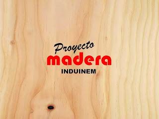 EL Inem Cartagena, madera, procesos, pedagogía