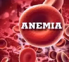 obat alami kurang darah (anemia)