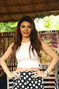 Hindi Actress Sherlyn Chopra photos-thumbnail-3