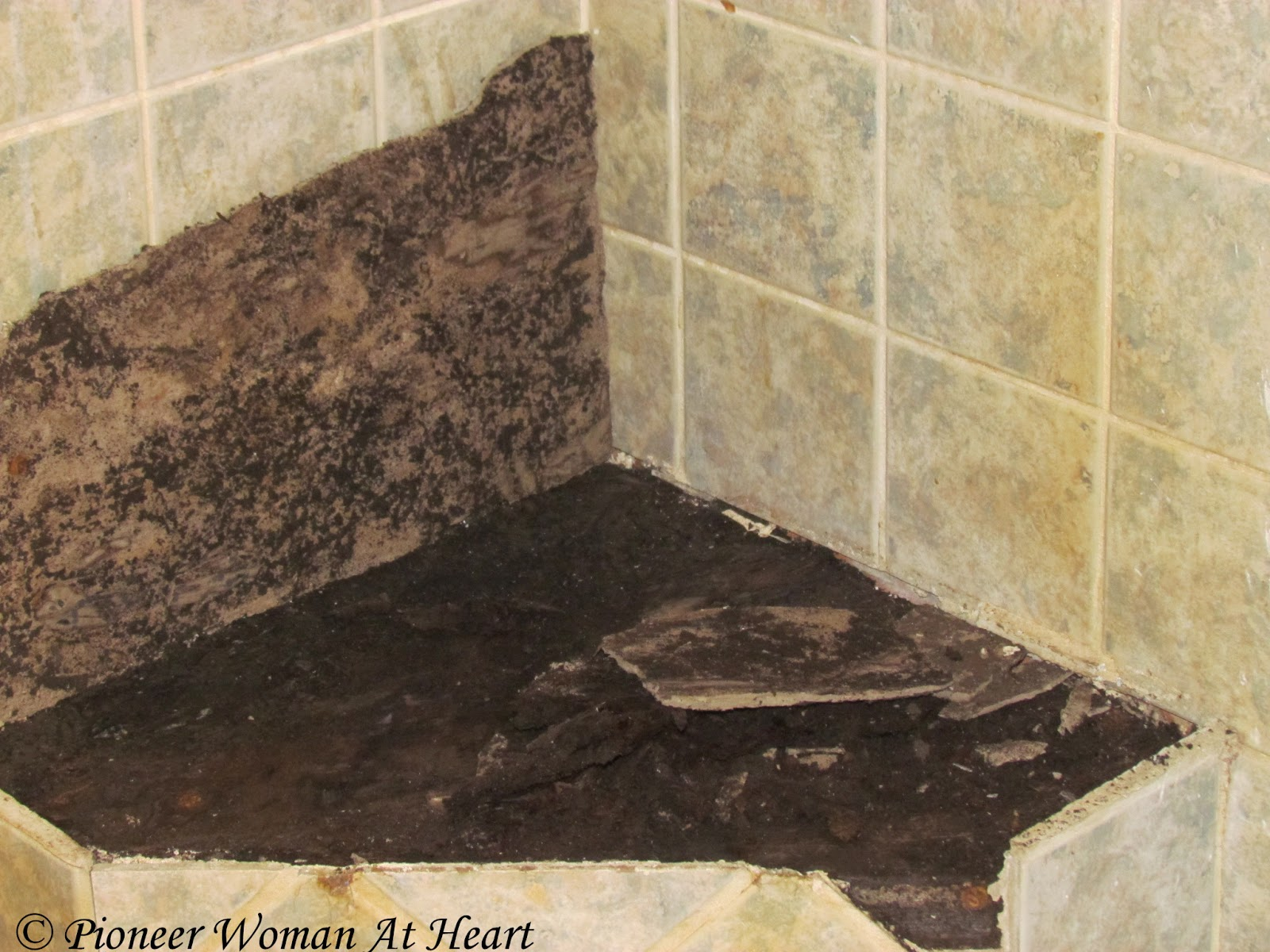 Bathroom Floor Black Mold : Pioneer woman at heart black mold shower project is not