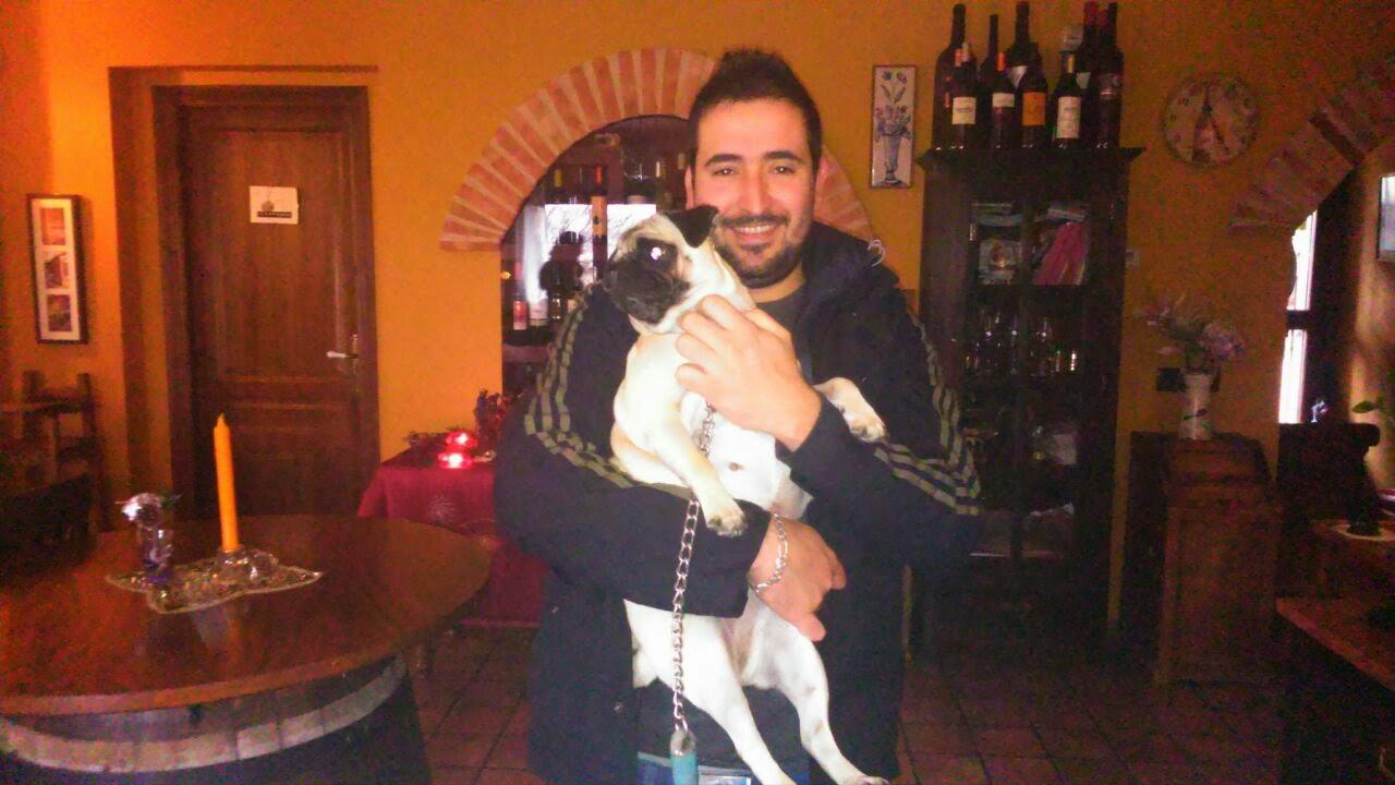 Experiencias caninas en Hospedería Ballesteros