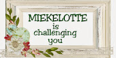 mieke lottes challenge