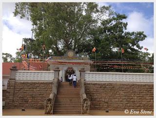 Eva Stone photo, Jaya Sri Maha Bodhi, Anuradhapura, Sri Lanka