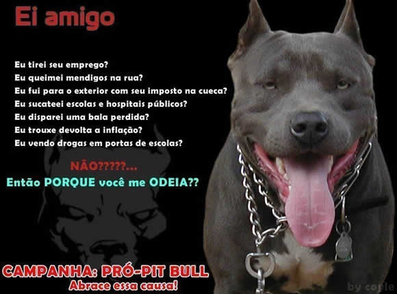 Pit Bulls | Imagens Facebook | Mensagens para Facebook #4