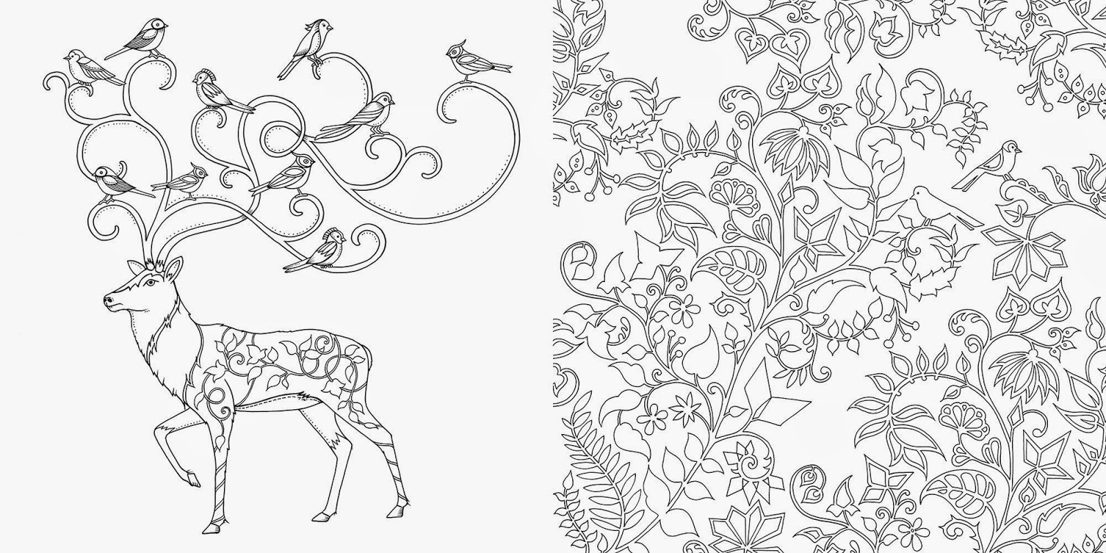 Enchanted forest coloring book website - Art Thursday Enchanted Forest An Inky Quest Coloring Book