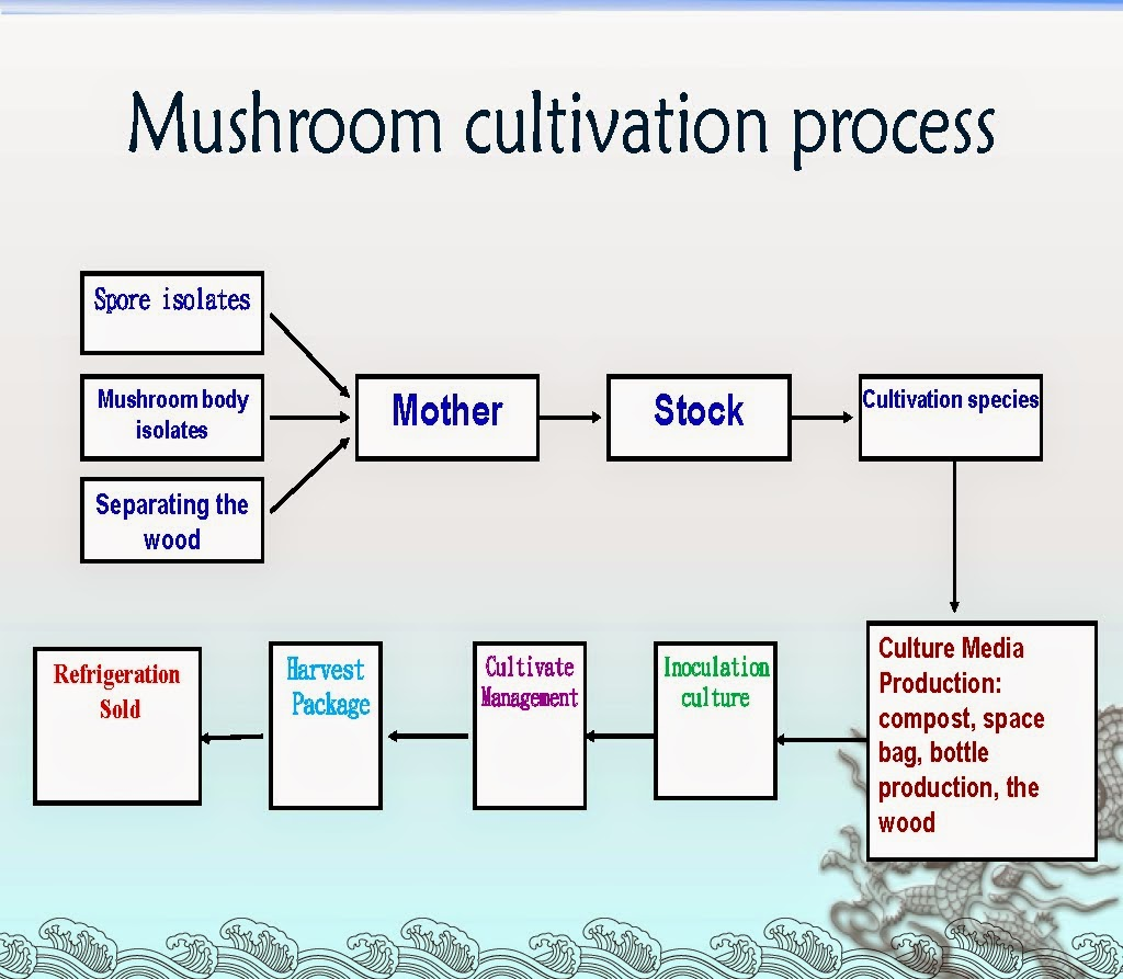 Cultivation pdf mushroom