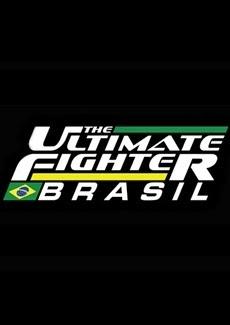 Assistir TUF Brasil 2015