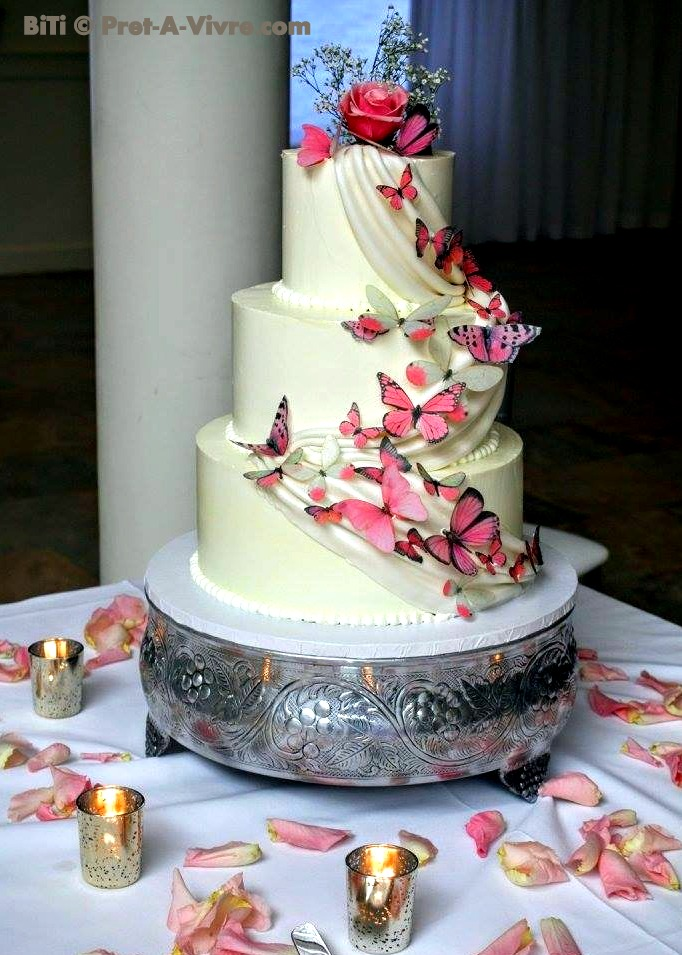 Butterfly and Rose Cake Photo