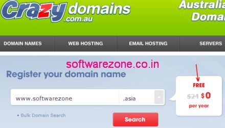 1year free domain name