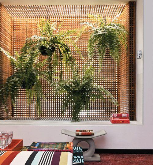 jardim vertical com samambaias em vasos