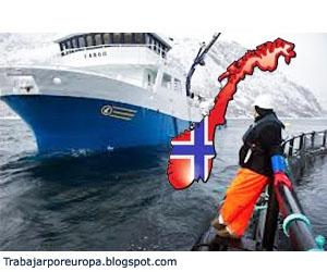 Trabajar en noruega en fabricas de salm n trabajar europa for Ofertas de empleo en fabricas