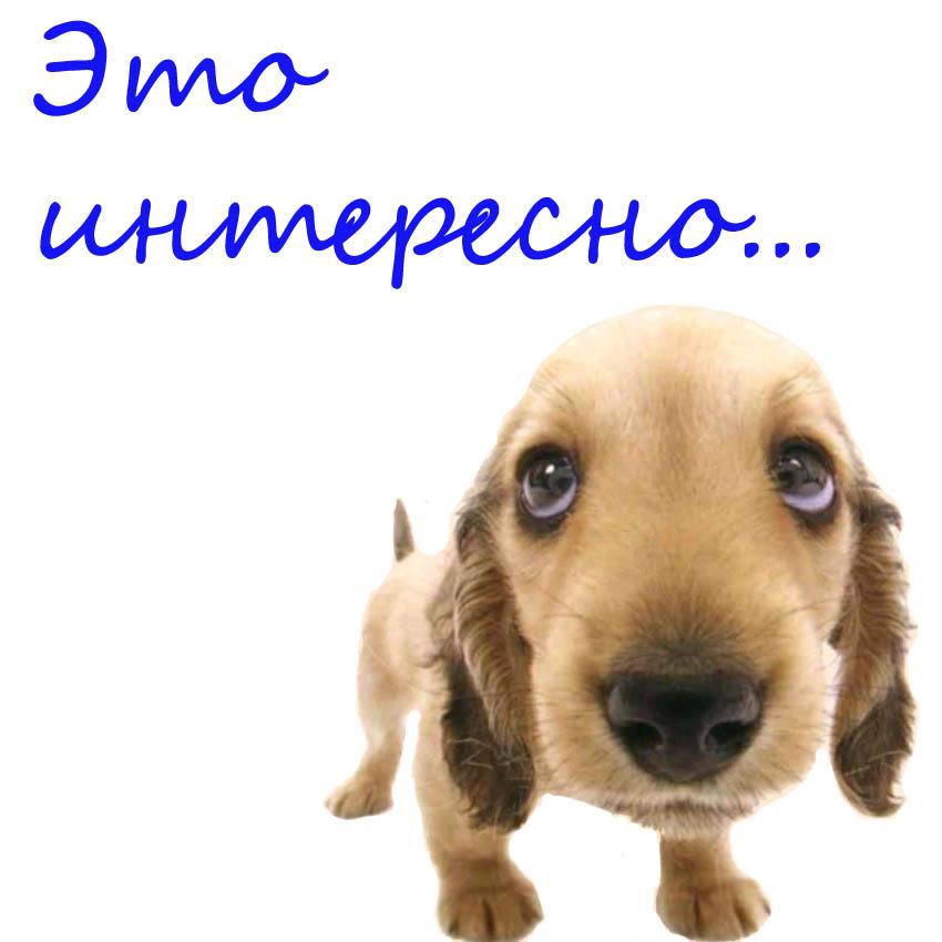 Idioma Ruso. Queda mucho por descubrir.: Las 7 maravillas de Rusia ...