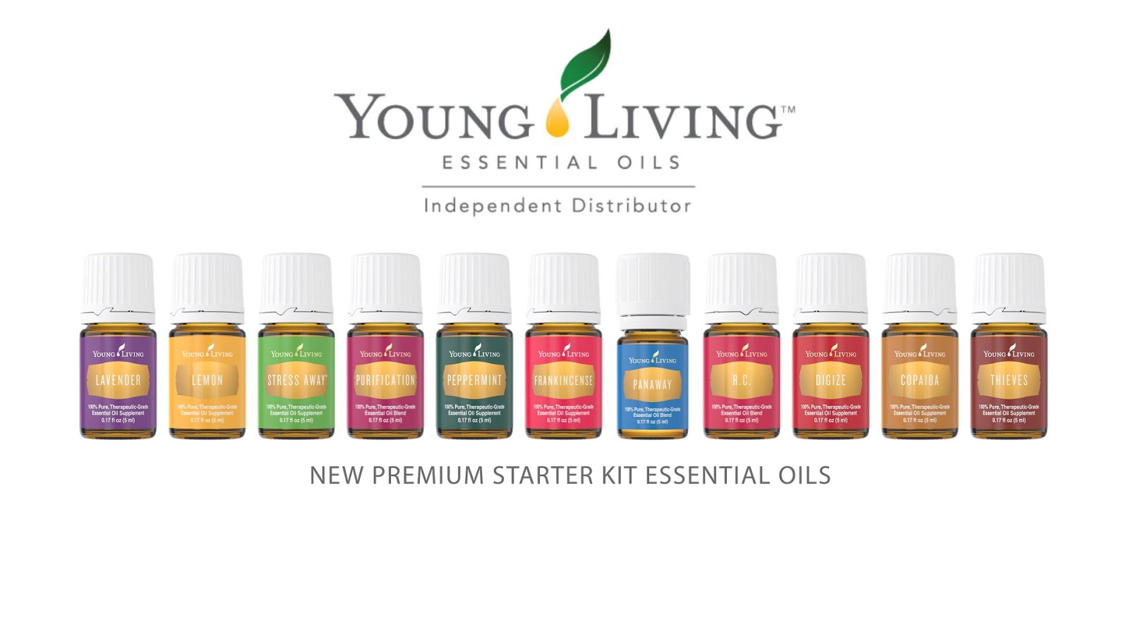 YOUNG LIVING SILVER LEADER