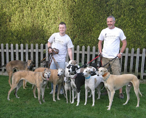 The Taylor hounds plus a few friends gathered for the publicty photo's