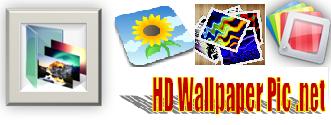 HD Wallpaper Pic
