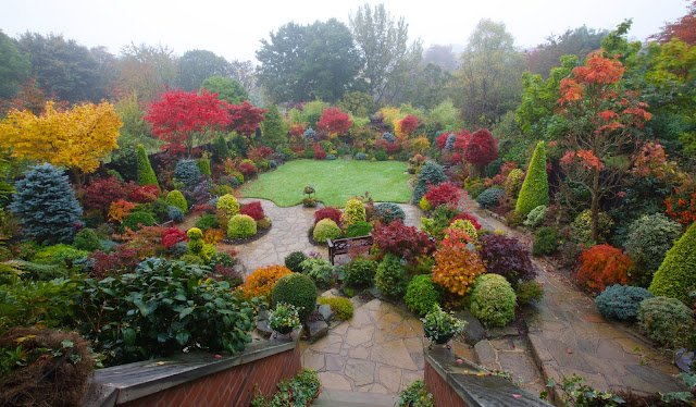 Balcony view of the autumn garden colours