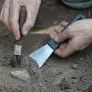 На Дону найдены древние скелеты обнявшихся Ромео и Джульетты
