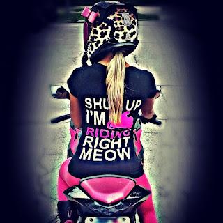 Pink Motorcycle Helmet Bows