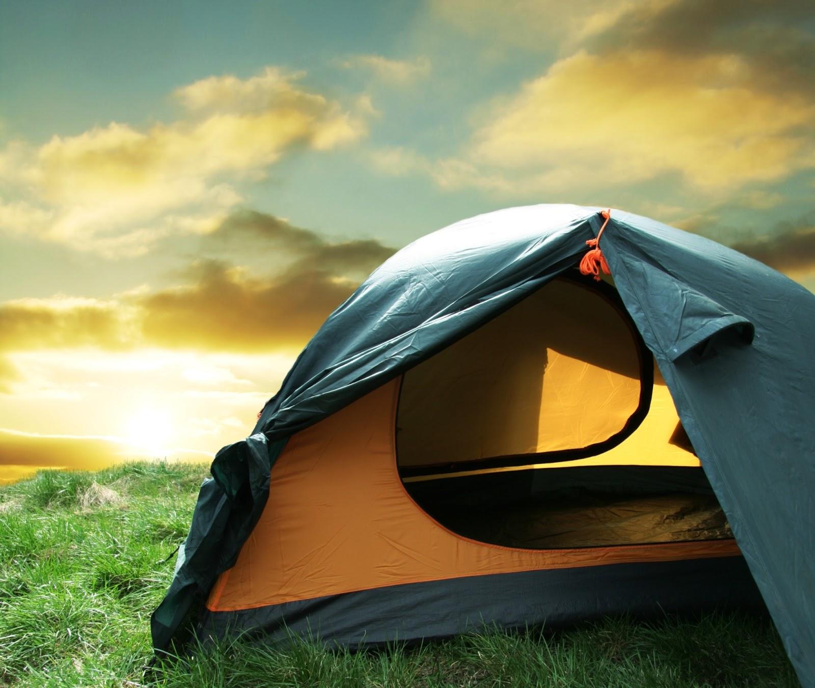Camping Survival Skills: SOS Gear Shop: Outdoor Survival Guide And Survival Essentials
