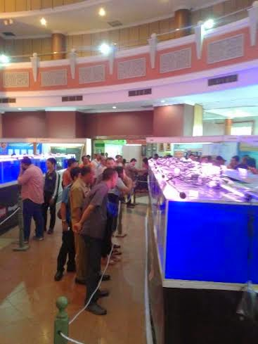 Equator Gemstone Expo 2015