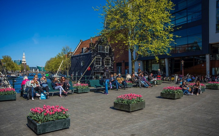 Festival tulipanes Amsterdam