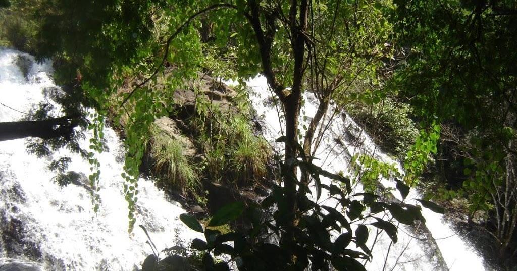 tamilnadu tourism silent valley national park   trekking
