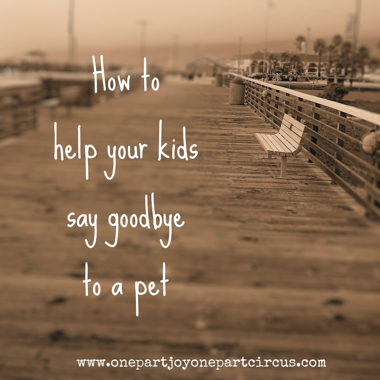 Goodbye Quotes For Pets. QuotesGram