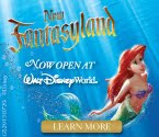 New Fantasyland Open