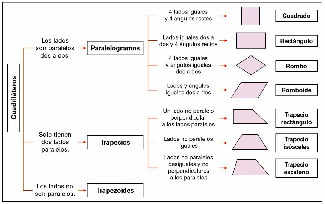 Aprender es divertido clasificaci n de cuadril teros for Caracteristicas de una habitacion