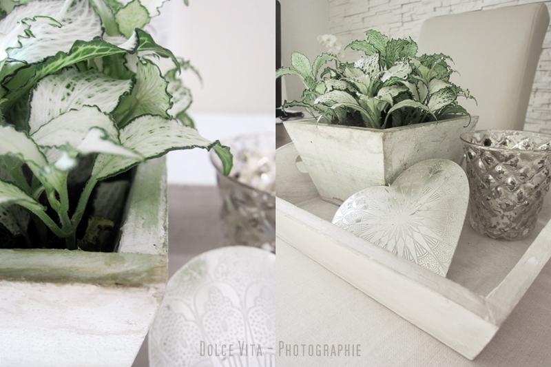 dolce vita winterdeko mit herz. Black Bedroom Furniture Sets. Home Design Ideas