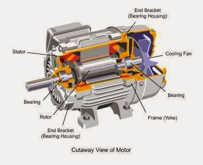 Cutaway View Of Ac Motor 26 besides Chapter 6 Generators further Electromag ism Squirrel Cage Rotor Vs together with How Brushless Dc Bldc Motors Work further Wind Turbine Generator Technologies. on ac motor winding diagram