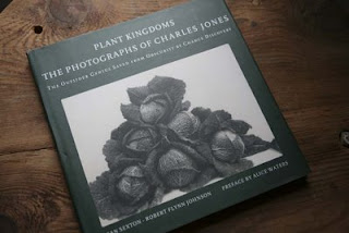Plant Kingdoms the photographs of Charles Jones