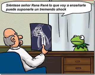 Humor Chiste sobre los rayos x Rana rene