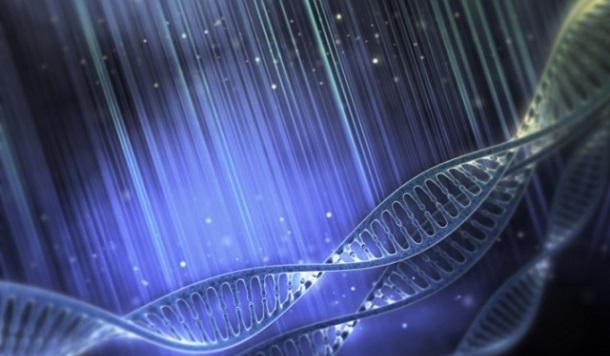 Como começou a vida na Terra?