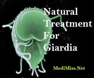 Natural Treatment For Giardia