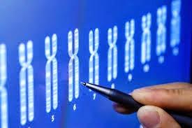 Frekuensi Gen dalam Populasi sebagai bagian dari Mekanisme Evolusi