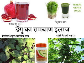 save from fever in monsoon