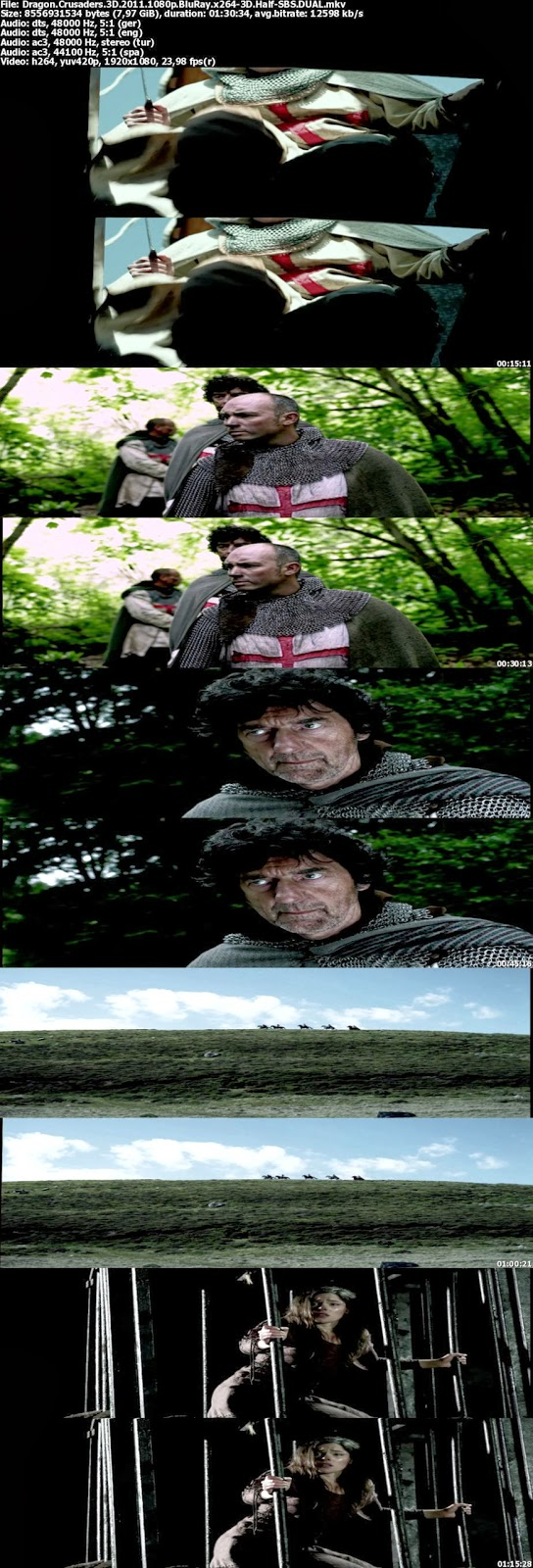 Dragon Savaşçıları 3D 2011 BluRay 1080p Türkçe Dublaj Film İndir